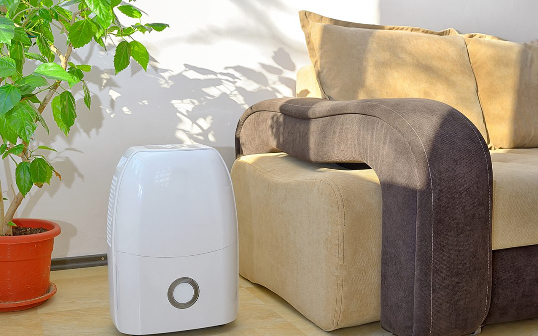 Seven Ways to Improve Your Indoor Air Quality