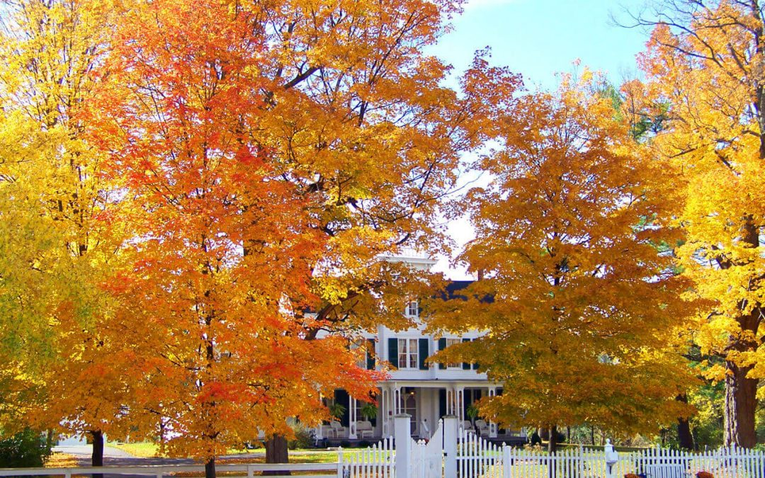 Fall Home Maintenance Tasks to Check Off Your List